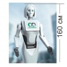 Робот Kiki/Кики в аренду