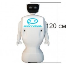 Робот Promobot V2 в долгосрочную аренду (Промобот)