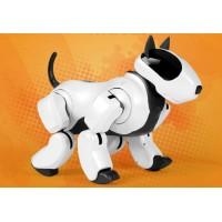 Собака робот Genibo в аренду