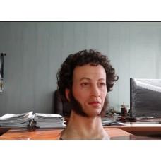 Робот Пушкин в аренду