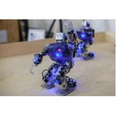 Роботы танцоры Робобилдеры в аренду