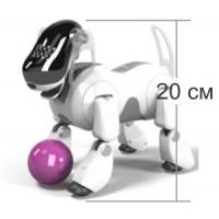 Робот пёс AIBO
