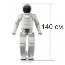 Робот ASIMO/Асимо в аренду